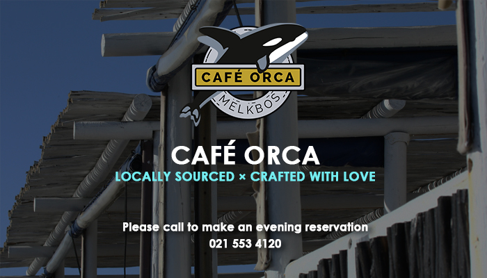 Delicious Fresh Seafood At Caf 233 Orca In Melkbosstrand