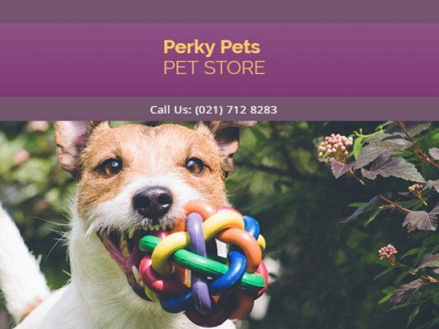 Perky Pets Melkbosstrand